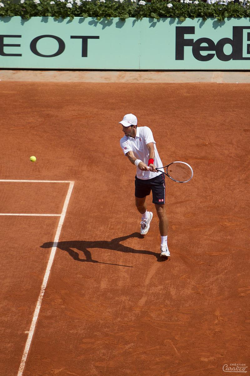 Novak %C4%90okovi%C4%87 2012 (2).jpg