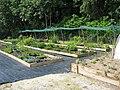 Nursery - Flickr - peganum (3).jpg