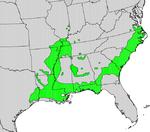 Nyssa aquatica map.png