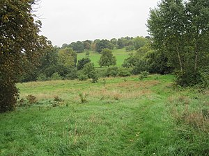 Oak Hill Wood - Image: Oak Hill Wood meadow and Oak Hill Park