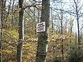 Oberthal-Teufelskanzel-20081026-02.jpg