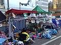 Occupy Central-104.JPG