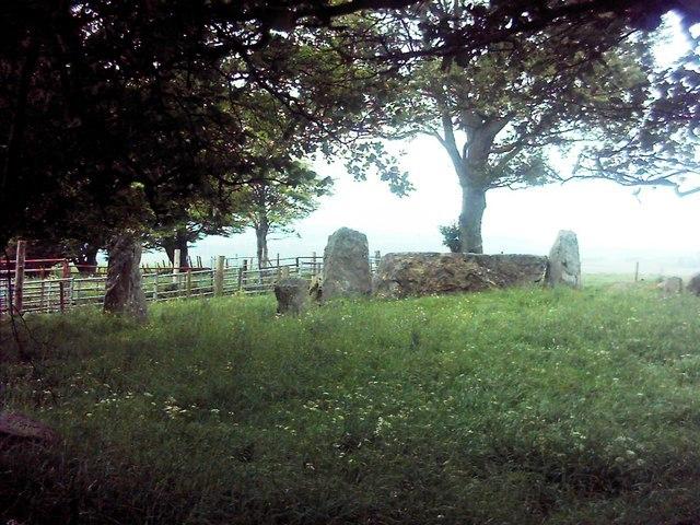 Old Keig Stone Circle - geograph.org.uk - 455962