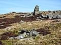 One of the Three Curricks - geograph.org.uk - 391058.jpg