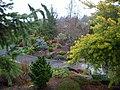 Oregon Garden conifer garden 2007-12-23 15-07-28 0048.jpeg