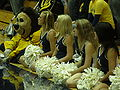 Oski & Cal Dance Team at women's volleyball, SJSU at Cal 2009-09-12.JPG