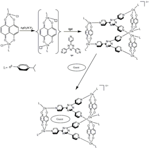 Coordination cage - Image: Osmium based Metallaprism Synthesis and Host Guest Assembly