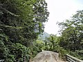 Otokoro, Itoigawa, Niigata Prefecture 949-0464, Japan - panoramio.jpg