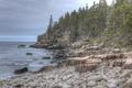 Otter Cliffs, Acadia National Park.tif