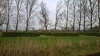 Overblijfselen Kasteel Middelburg, Oudorp 01.jpg