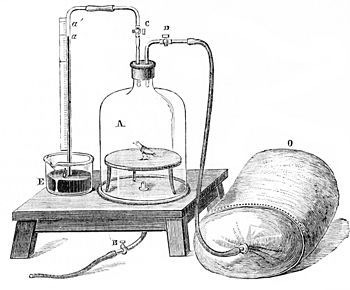 PSM V11 D334 Oxygenation of blood.jpg