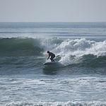 Paddle surfing 13 2008.jpg
