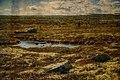 Painting of lakes (21734693920).jpg