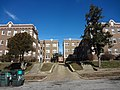 Pair of Apartment Buildings on Chamberlain in the West End.jpg