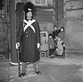 Paleiswacht bij Slot Amalienborg met op de achtergrond toeschouwers, Bestanddeelnr 252-8673.jpg