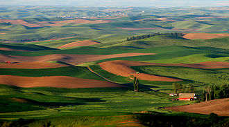 Eastern Washington - Image: Palouse Hills from Steptoe Butte