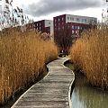 Parc du Chemin-de-l'Ile 5. CC by Ariel Kogan.jpg