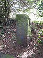 Parish boundary marker stone - geograph.org.uk - 1773596.jpg