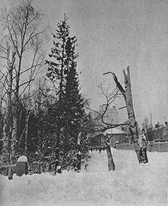 Park in Oulu 1940.jpg