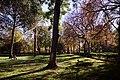 Parque del Retiro, Madrid - 003.jpg