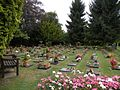 Part of Hoddesdon Cemetery - geograph.org.uk - 1483725.jpg