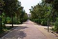 Passeig de la carrasca, parc de Marxalenes.JPG