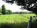 Pastures in Raveningham Park - geograph.org.uk - 1337970.jpg