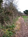 Path from Bradfield Road to Lyngate Road - geograph.org.uk - 1087587.jpg