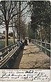 Pathway in Madison Park, Seattle, ca 1907 (MOHAI 3380).jpg