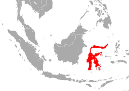 Peleng Leaf-nosed Bat area.png
