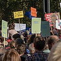 People's Vote March 2018-10-20 - Democracy allows us to ask WTF.jpg
