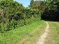 Perimeter wall of Warnham Manor - geograph.org.uk - 1493790.jpg