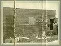 Photograph of A Woman Standing in the Doorway of a Cabin - NARA - 7829554.jpg