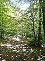 Pian della Rasa-paesaggio 23.jpg