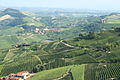 Piemonte, Italy landscape with vineyards.jpg