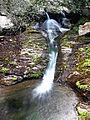 Pietracorbara cascade du ruisseau d'Olmo.jpg