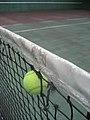 Playing Tennis (2969866280).jpg