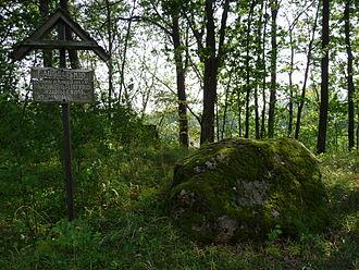 Ignalina District Municipality - Image: Pliateriu akmuo