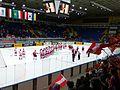 Poland vs. Austria at 2017 IIHF World Championship Division I 06.jpg