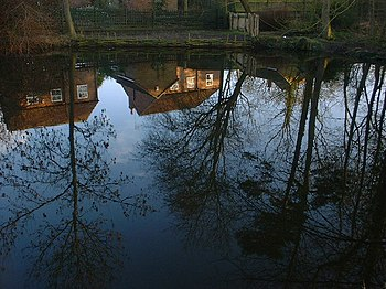English: Pond Reflections Winter Scene. Glebe ...