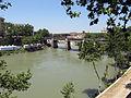 Ponte Palatino (15606109798).jpg