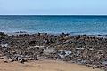 Praia de Matagorda - Puerto del Carmen - Tías - Lanzarote - España.PC20.jpg