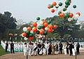 Pratibha Devisingh Patil at the releasing of the tricolour balloons at the Samadhi of former Prime Minister, Pandit Jawaharlal Nehru on his 119th birth anniversary at Shantivan, in Delhi on November 14, 2008.jpg