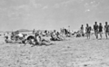 Queensland State Archives 1131 Beach scene Maroochydore January 1931.png