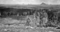 Queensland State Archives 368 Looking across Wootha towards the Glass House Mountains c 1931.png