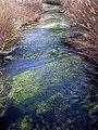 Río Dulce por Aragosa.jpg