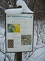 Rödinghausen 2009-01-10 049.jpg