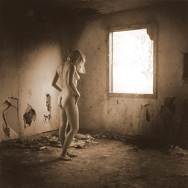 File:Rear view of nude woman standing in front of a window.jpg