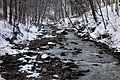 Red Hill Creek In The Winter.JPG