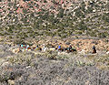 Red Rock Canyon riders 3.jpg